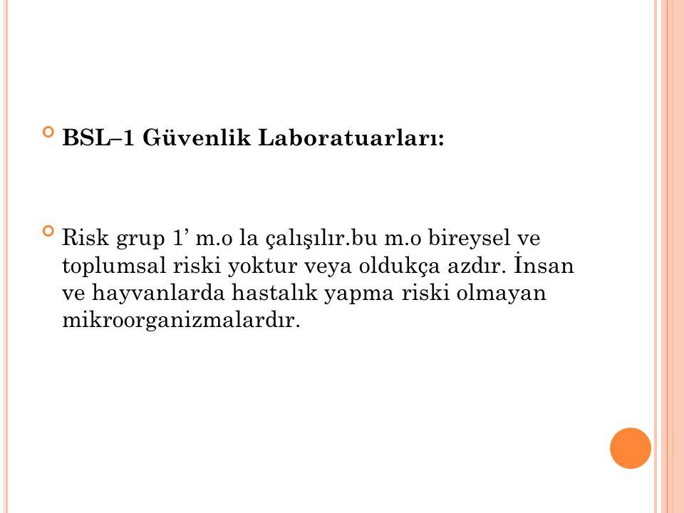 BSL–1 Güvenlik Laboratuarları: