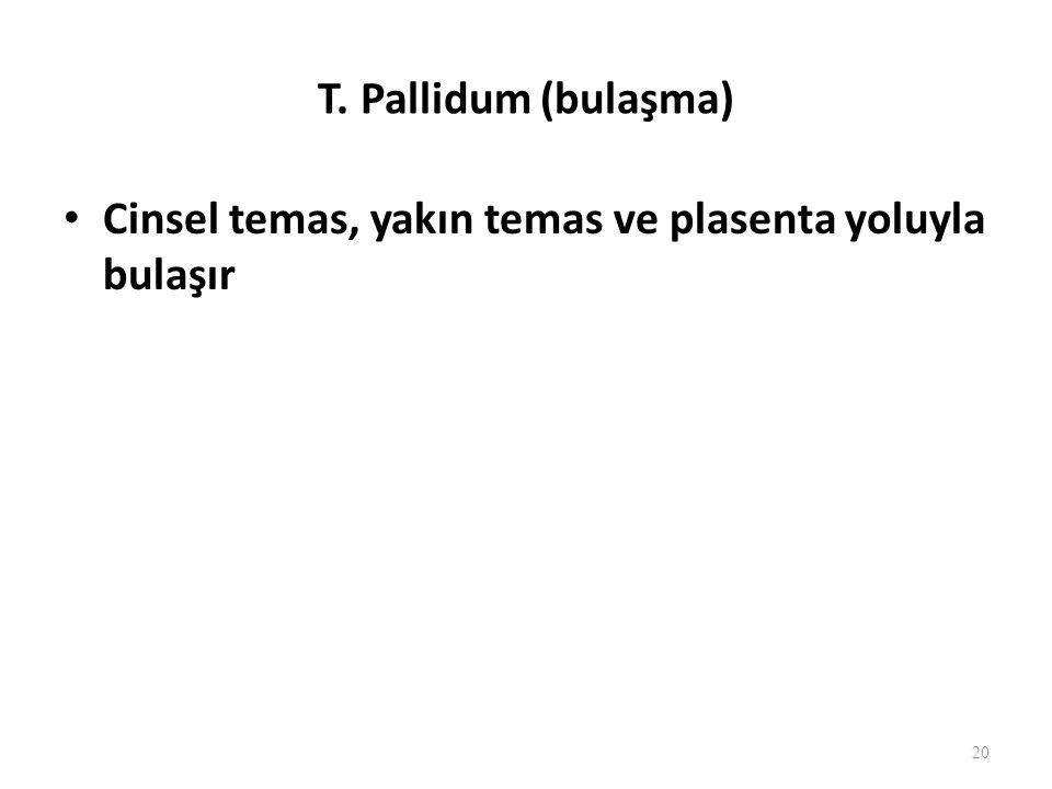 T. Pallidum (bulaşma) Cinsel temas, yakın temas ve plasenta yoluyla bulaşır