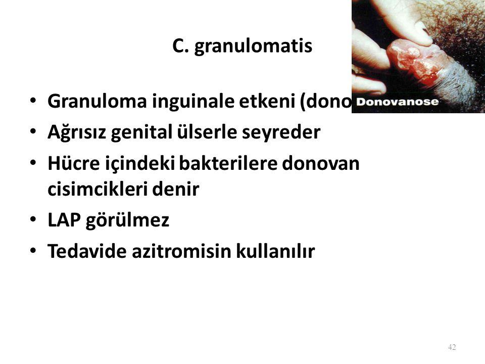 C. granulomatis Granuloma inguinale etkeni (donovanosis) Ağrısız genital ülserle seyreder. Hücre içindeki bakterilere donovan cisimcikleri denir.