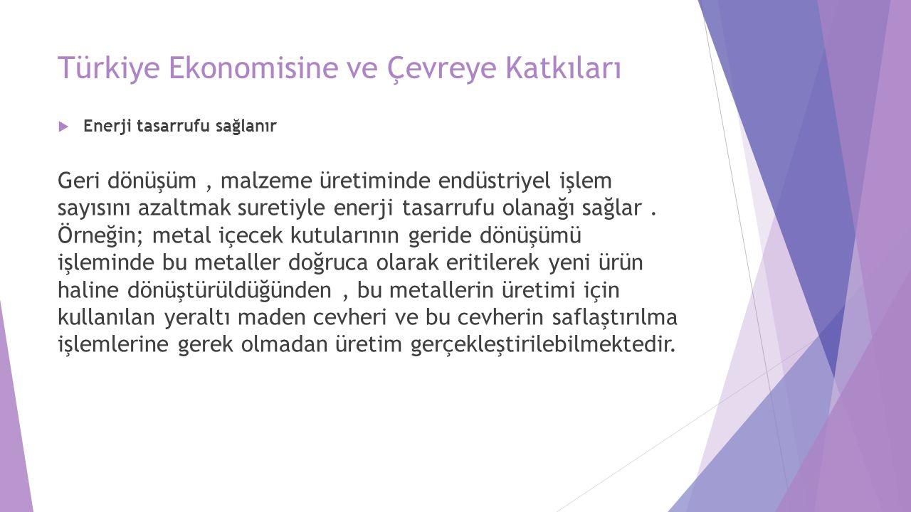 Türkiye Ekonomisine ve Çevreye Katkıları