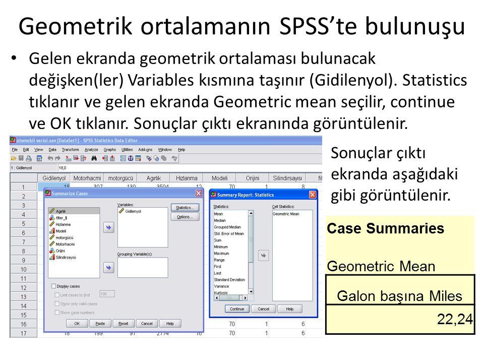 Geometrik ortalamanın SPSS'te bulunuşu