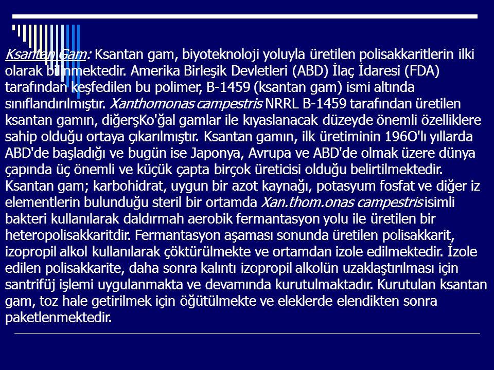 Ksantan Gam: Ksantan gam, biyoteknoloji yoluyla üretilen polisakkaritlerin ilki olarak bilinmektedir.