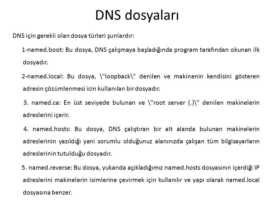DNS dosyaları