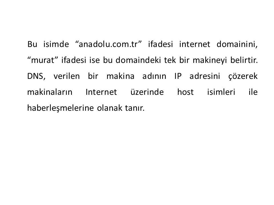 Bu isimde anadolu.com.tr ifadesi internet domainini, murat ifadesi ise bu domaindeki tek bir makineyi belirtir.