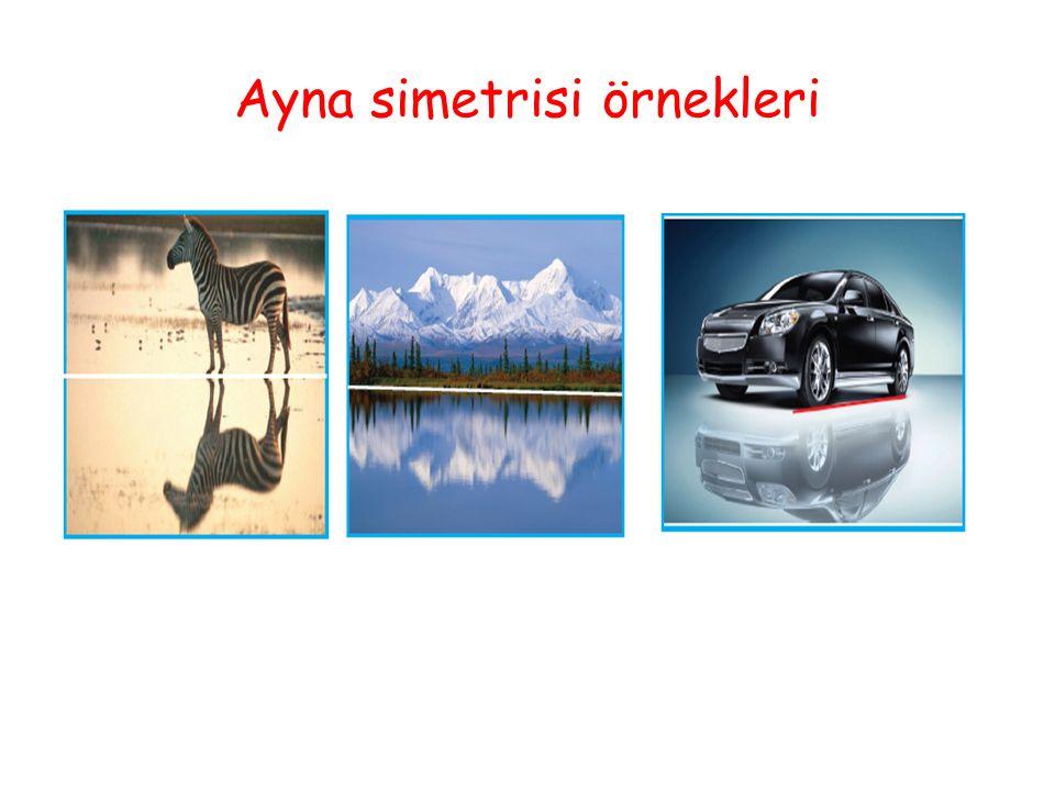 Ayna simetrisi örnekleri