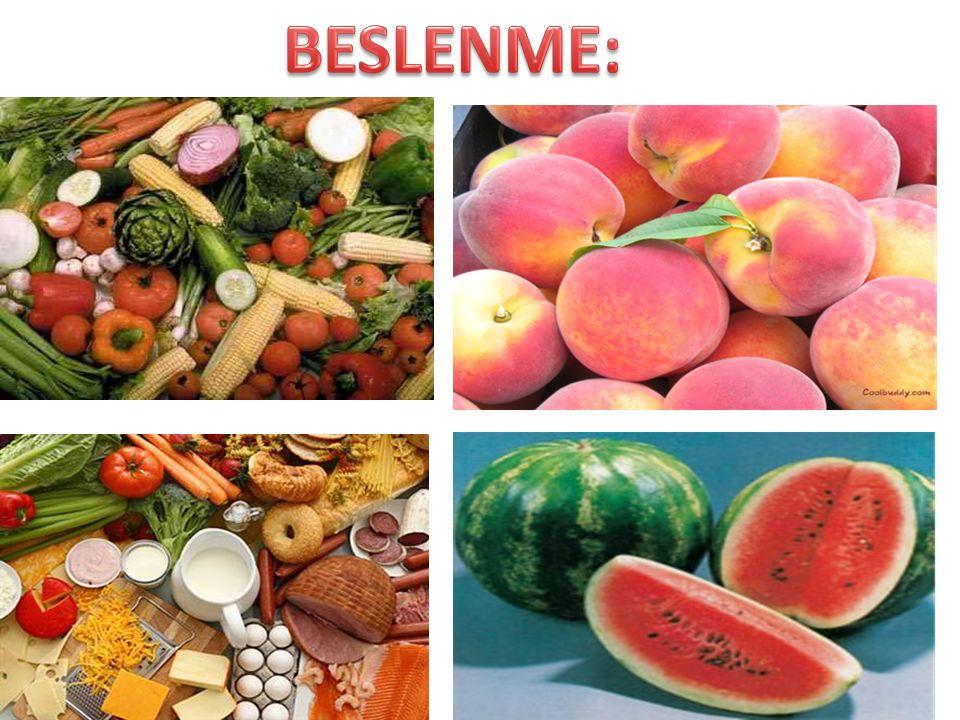 BESLENME: