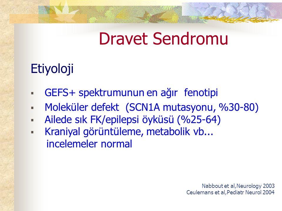 Dravet Sendromu Etiyoloji GEFS+ spektrumunun en ağır fenotipi