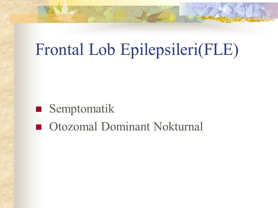 Frontal Lob Epilepsileri(FLE)