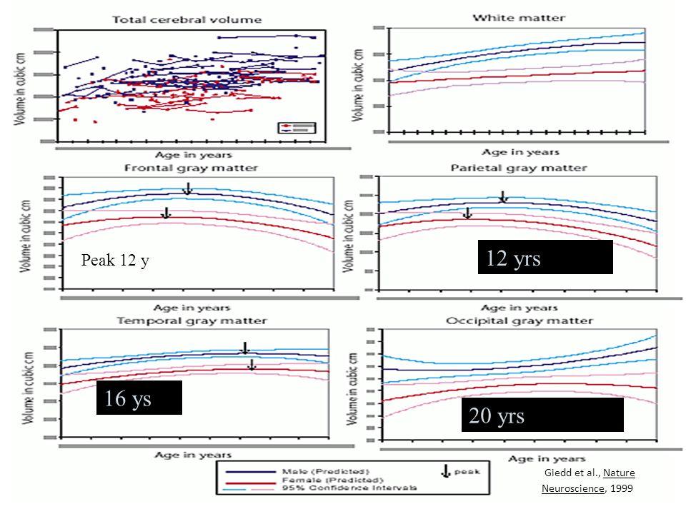 12 yrs Peak 12 y 16 ys 20 yrs Giedd et al., Nature Neuroscience, 1999