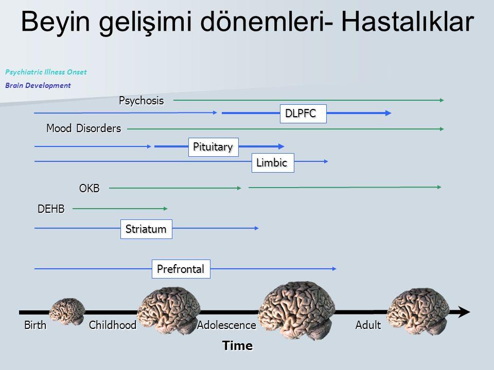 Beyin gelişimi dönemleri- Hastalıklar
