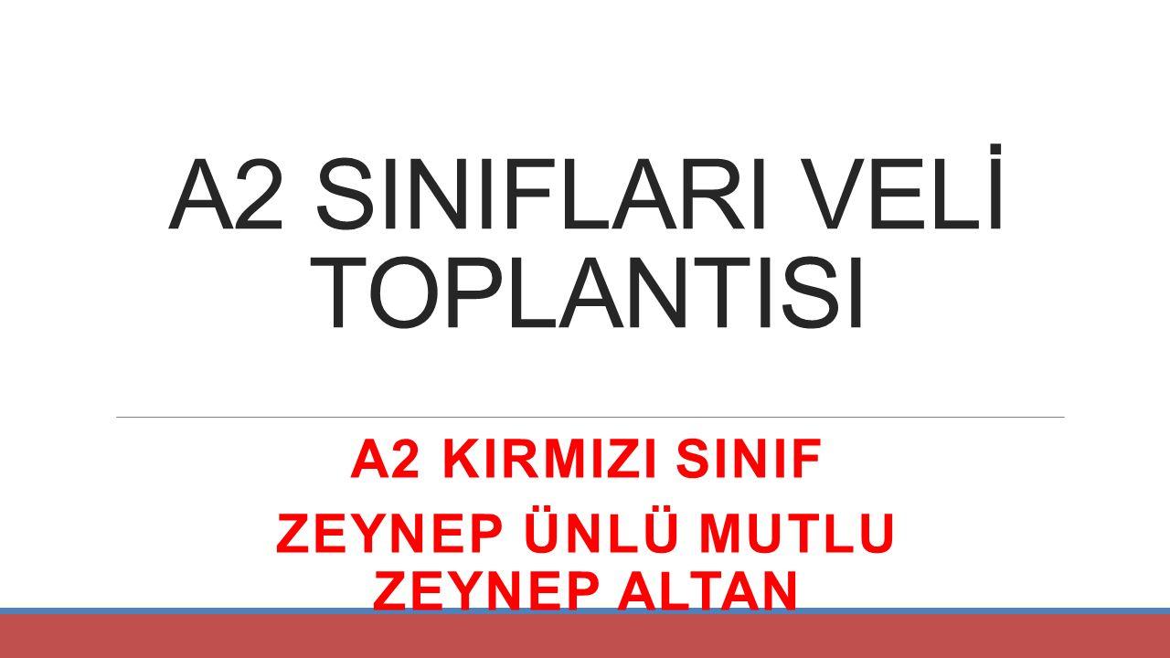 A2 SINIFLARI VELİ TOPLANTISI