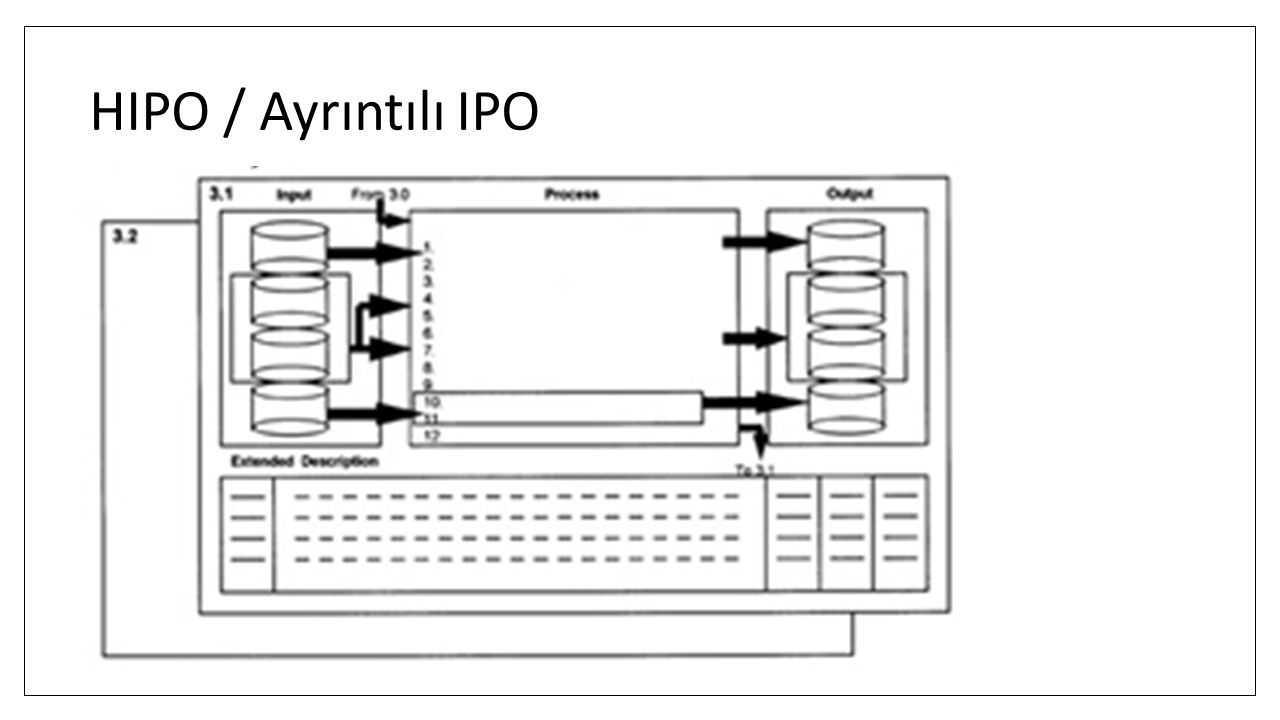 HIPO / Ayrıntılı IPO
