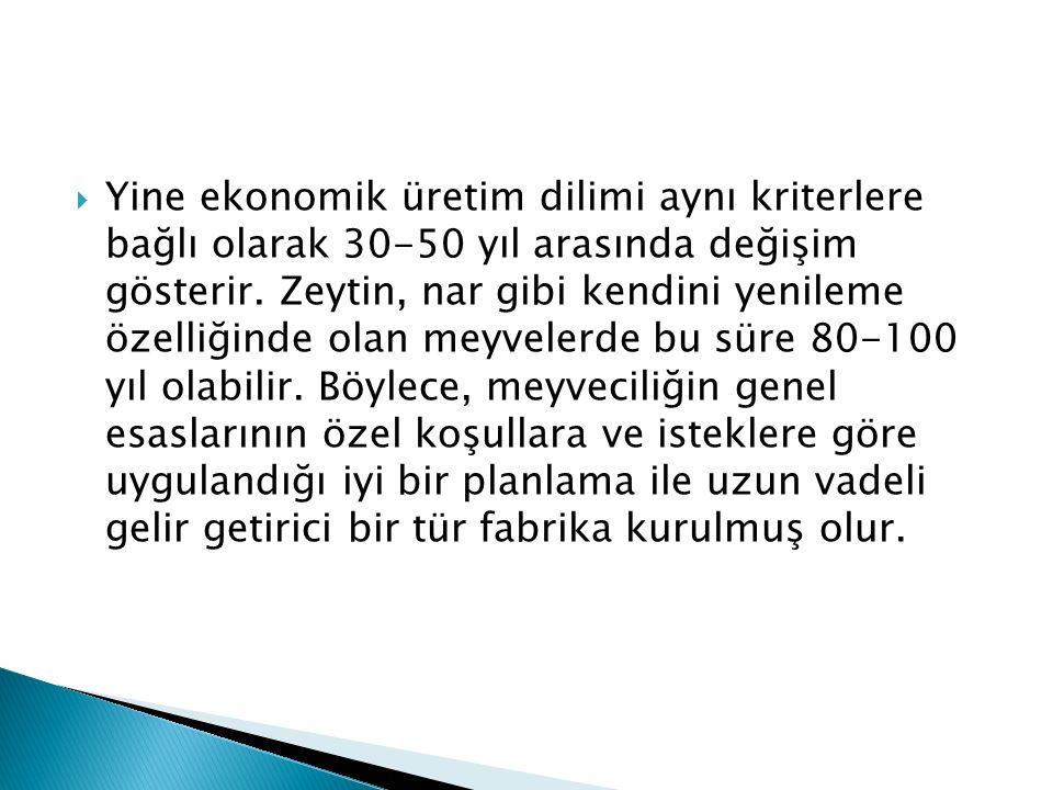 Yine ekonomik üretim dilimi aynı kriterlere bağlı olarak 30-50 yıl arasında değişim gösterir.