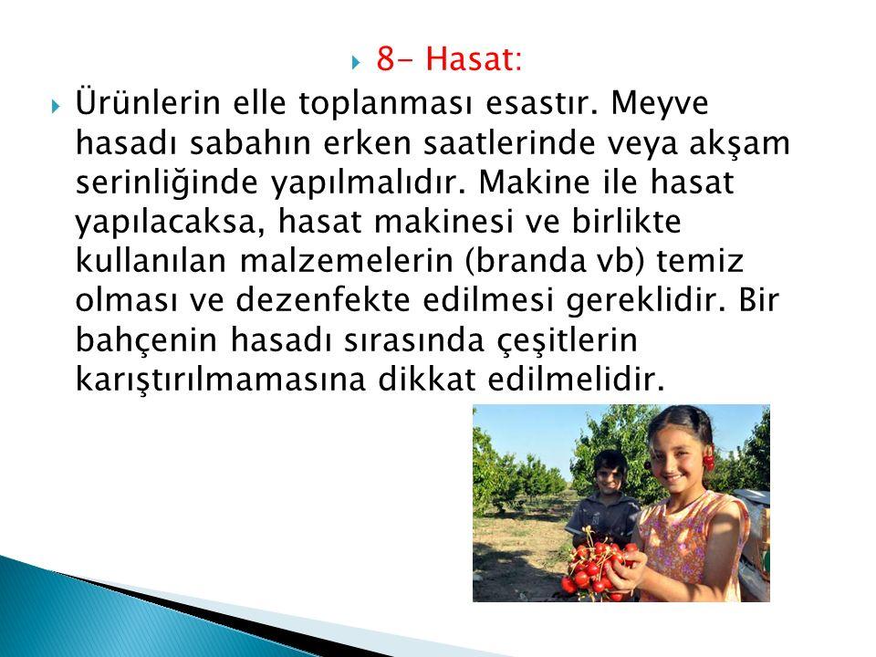 8- Hasat: