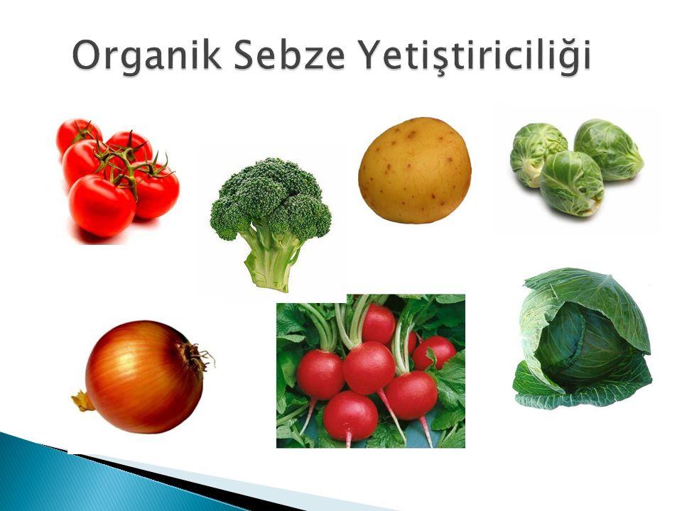 Organik Sebze Yetiştiriciliği