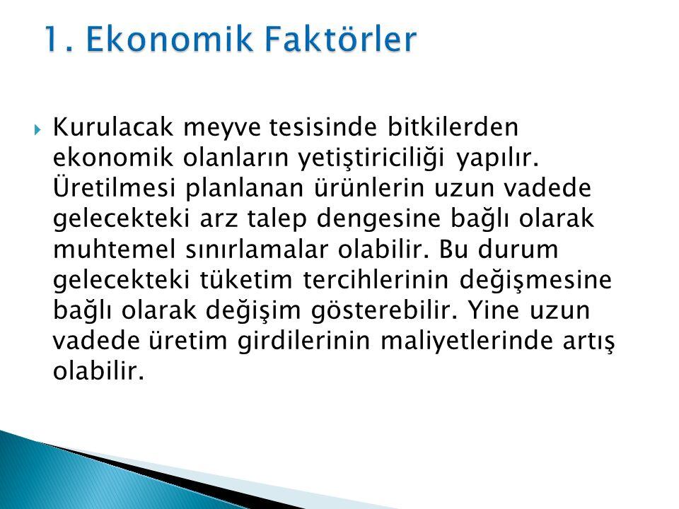 1. Ekonomik Faktörler