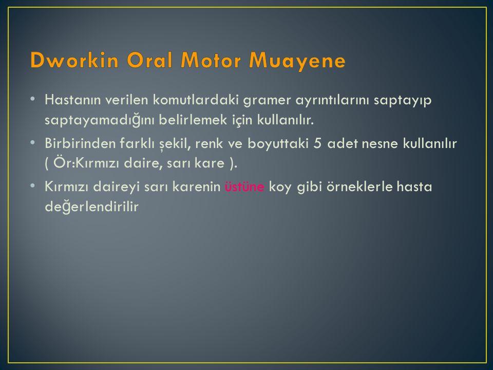 Dworkin Oral Motor Muayene