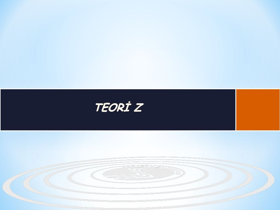 TEORİ Z B