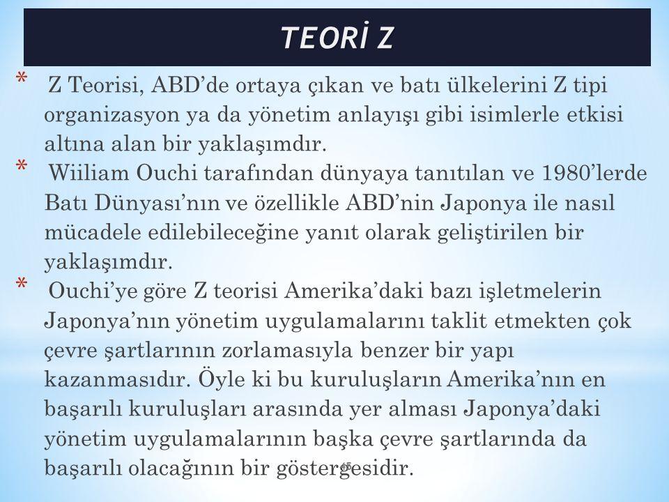 TEORİ Z