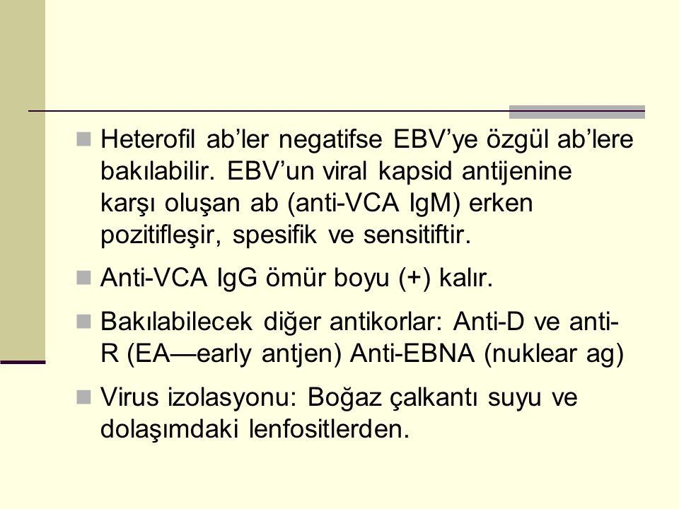 Heterofil ab'ler negatifse EBV'ye özgül ab'lere bakılabilir
