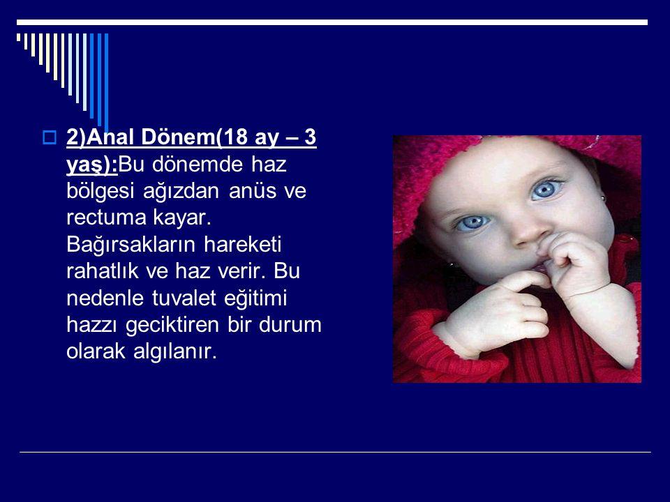 2)Anal Dönem(18 ay – 3 yaş):Bu dönemde haz bölgesi ağızdan anüs ve rectuma kayar.
