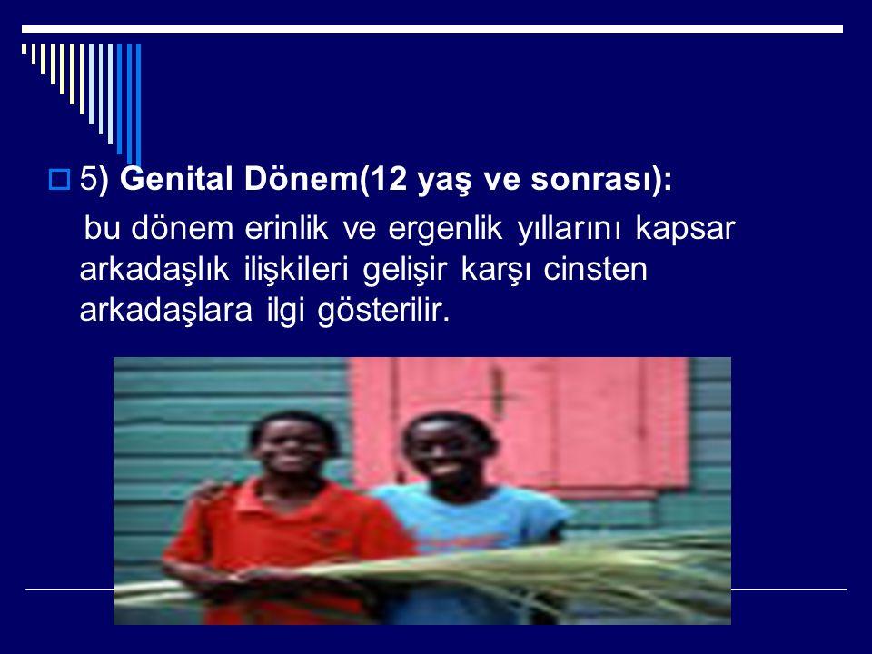 5) Genital Dönem(12 yaş ve sonrası):