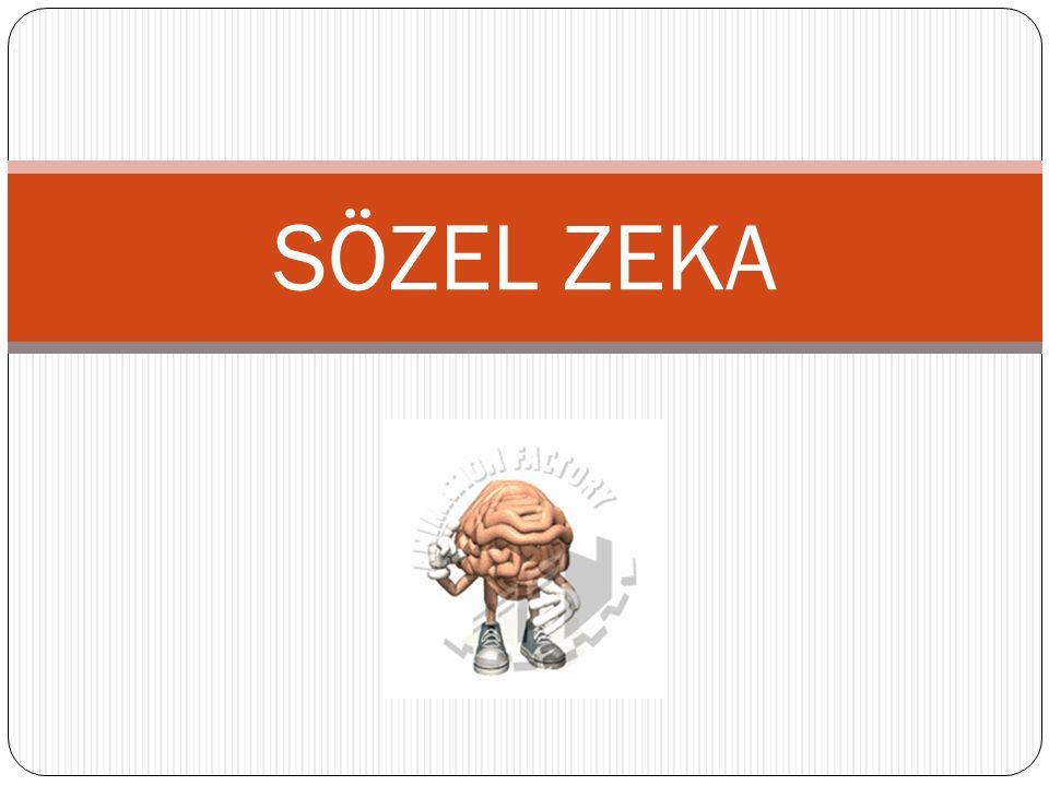 SÖZEL ZEKA