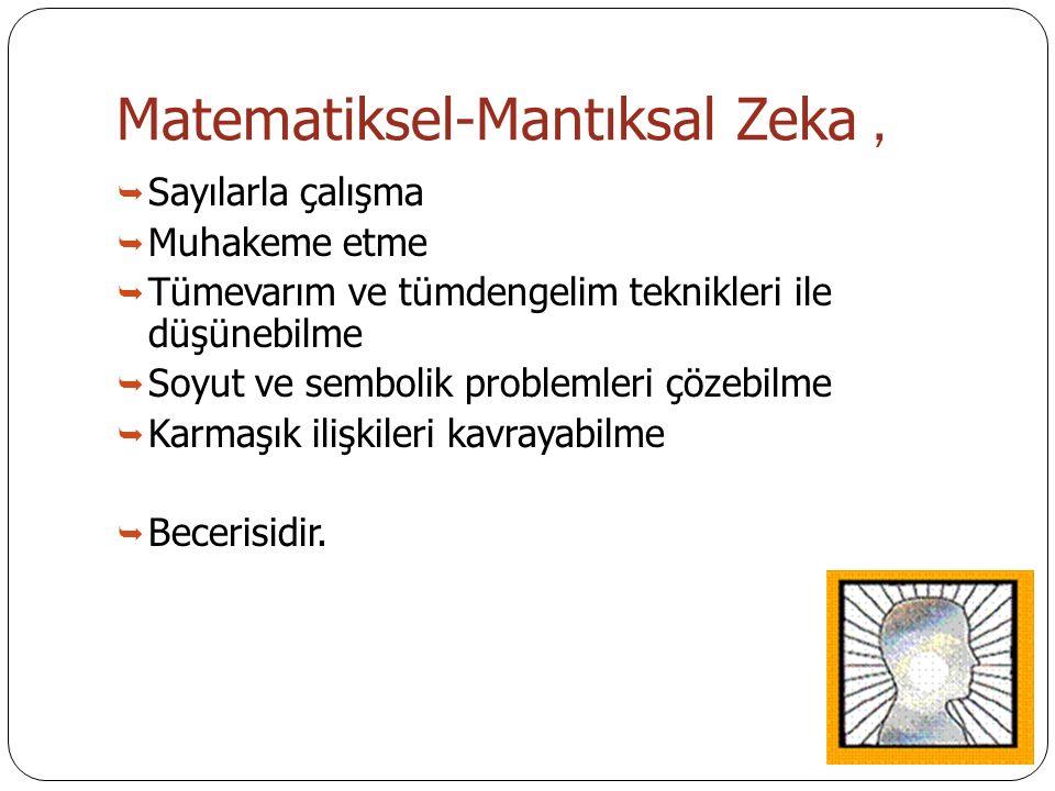 Matematiksel-Mantıksal Zeka ,