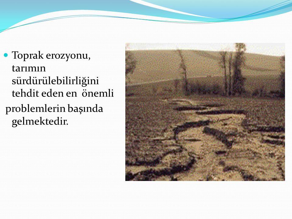 Toprak erozyonu, tarımın sürdürülebilirliğini tehdit eden en önemli