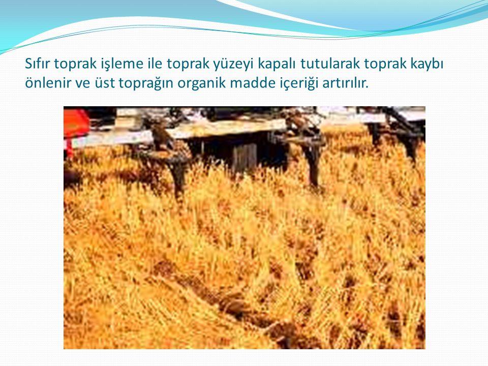 Sıfır toprak işleme ile toprak yüzeyi kapalı tutularak toprak kaybı önlenir ve üst toprağın organik madde içeriği artırılır.