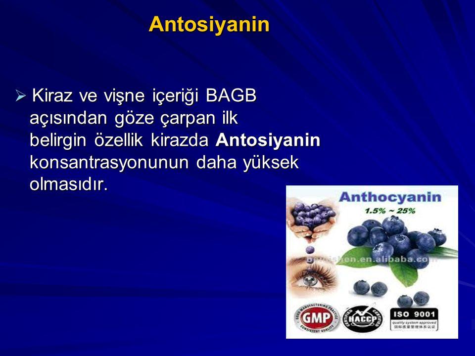 Antosiyanin Kiraz ve vişne içeriği BAGB açısından göze çarpan ilk