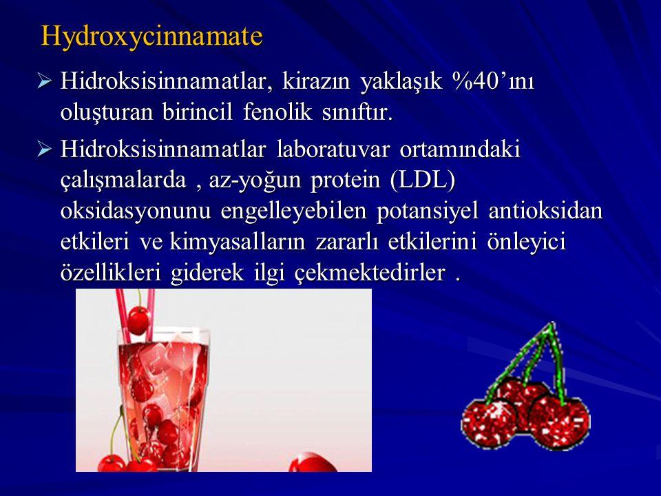 Hydroxycinnamate Hidroksisinnamatlar, kirazın yaklaşık %40'ını oluşturan birincil fenolik sınıftır.