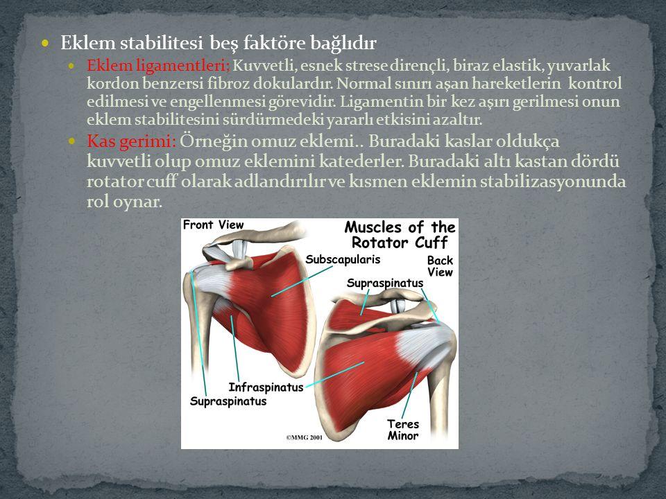 Eklem stabilitesi beş faktöre bağlıdır