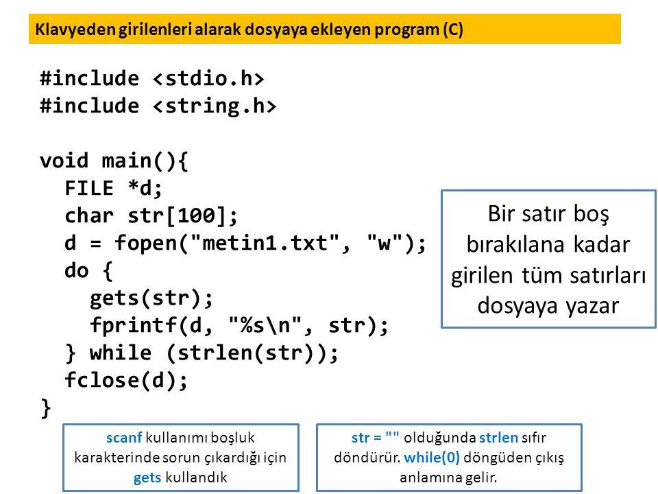 Klavyeden girilenleri alarak dosyaya ekleyen program (C)