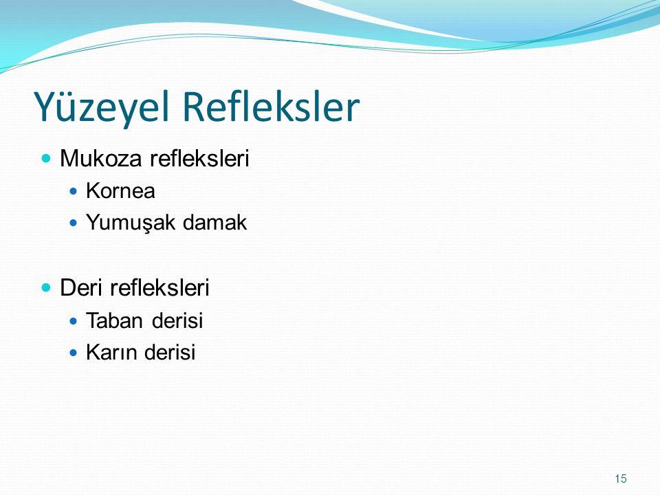 Yüzeyel Refleksler Mukoza refleksleri Deri refleksleri Kornea