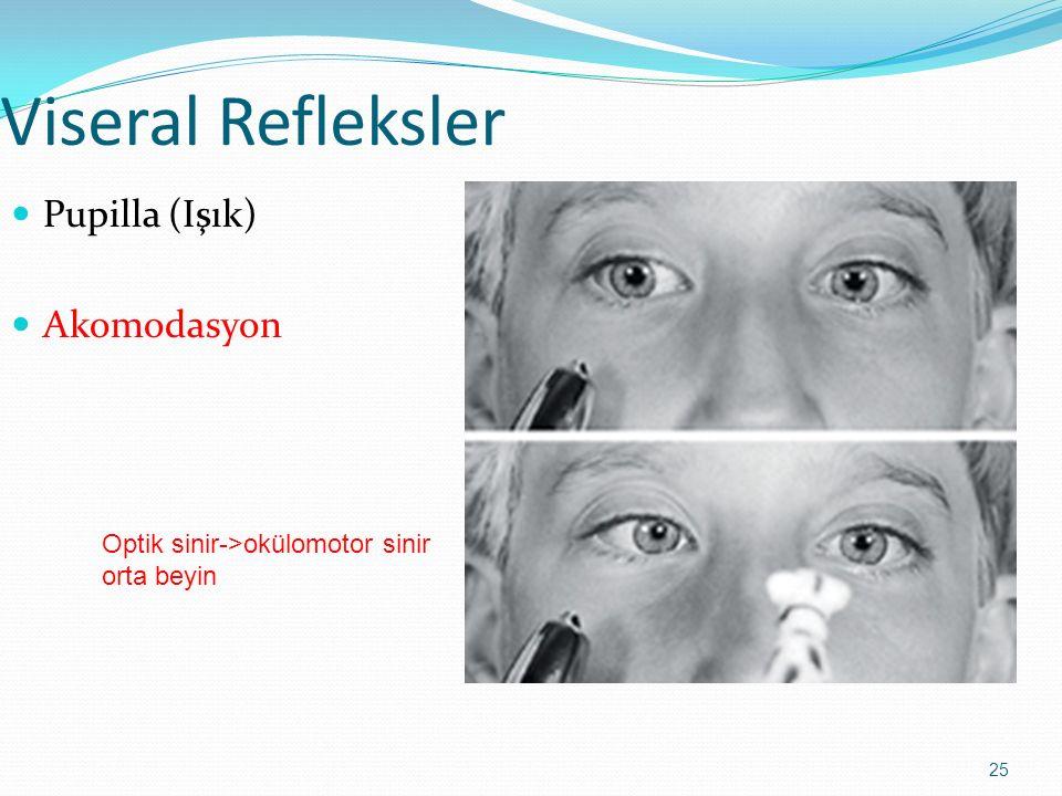Viseral Refleksler Pupilla (Işık) Akomodasyon