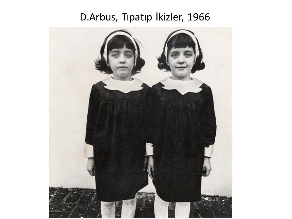D.Arbus, Tıpatıp İkizler, 1966