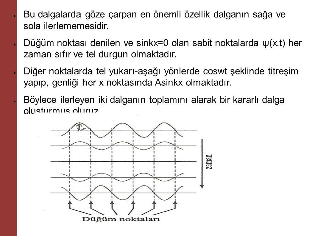 Bu dalgalarda göze çarpan en önemli özellik dalganın sağa ve sola ilerlememesidir.