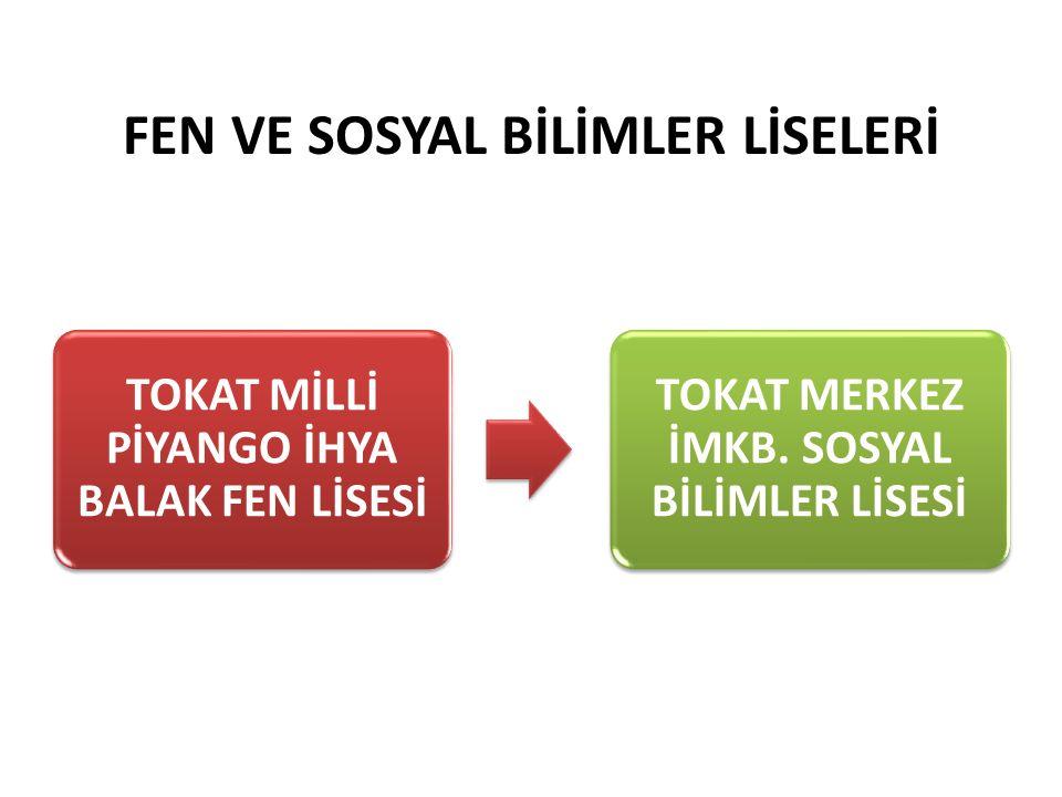 FEN VE SOSYAL BİLİMLER LİSELERİ