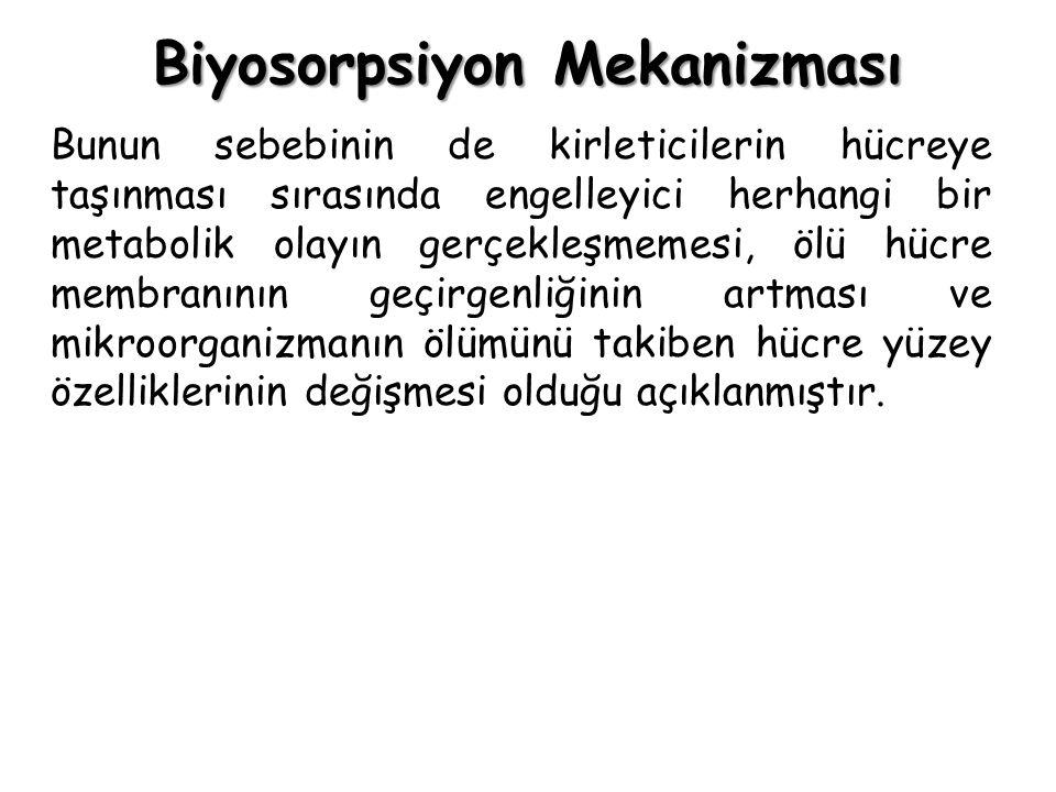 Biyosorpsiyon Mekanizması