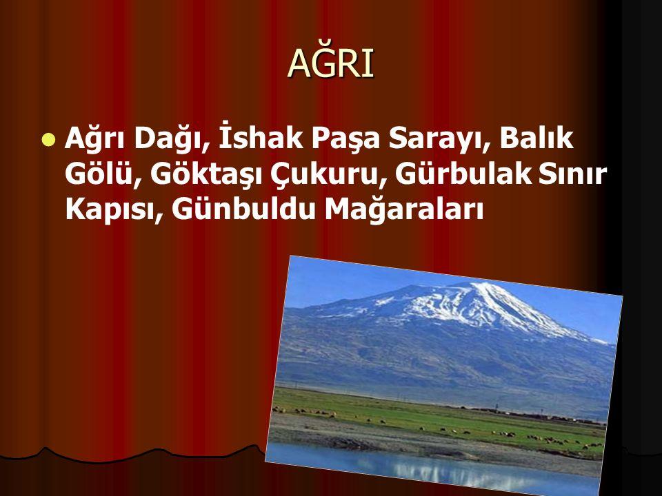 AĞRI Ağrı Dağı, İshak Paşa Sarayı, Balık Gölü, Göktaşı Çukuru, Gürbulak Sınır Kapısı, Günbuldu Mağaraları.