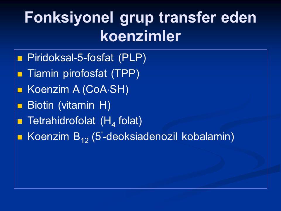 Fonksiyonel grup transfer eden koenzimler