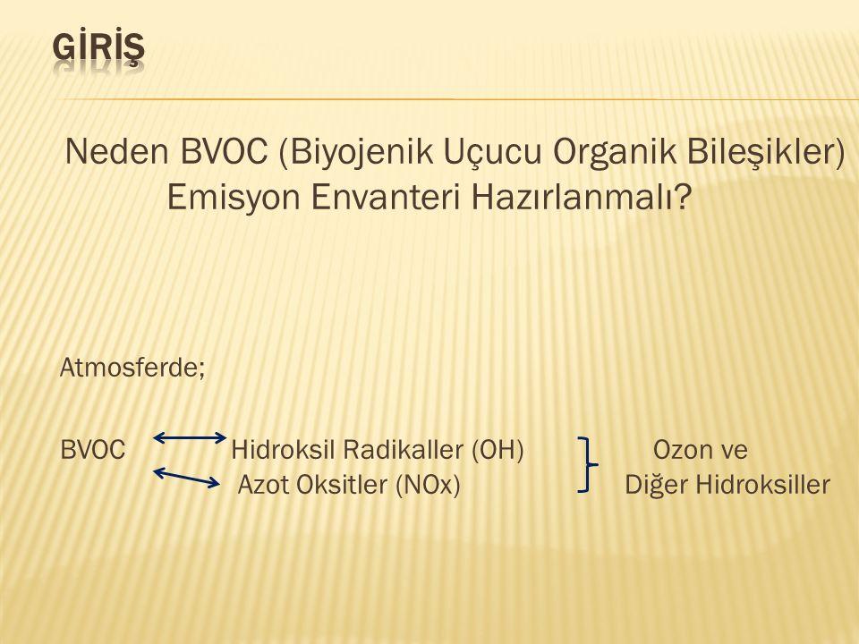 GİRİŞ Neden BVOC (Biyojenik Uçucu Organik Bileşikler) Emisyon Envanteri Hazırlanmalı Atmosferde;