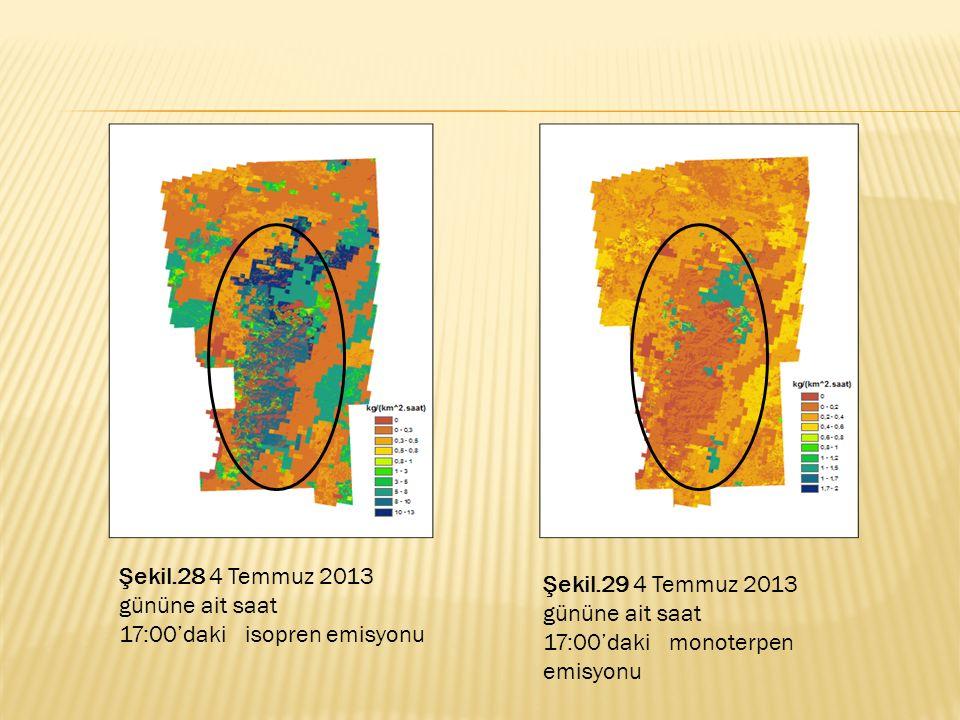 Şekil.28 4 Temmuz 2013 gününe ait saat 17:00'daki isopren emisyonu