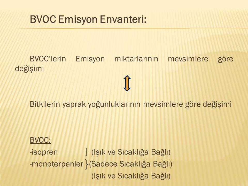 BVOC Emisyon Envanteri: