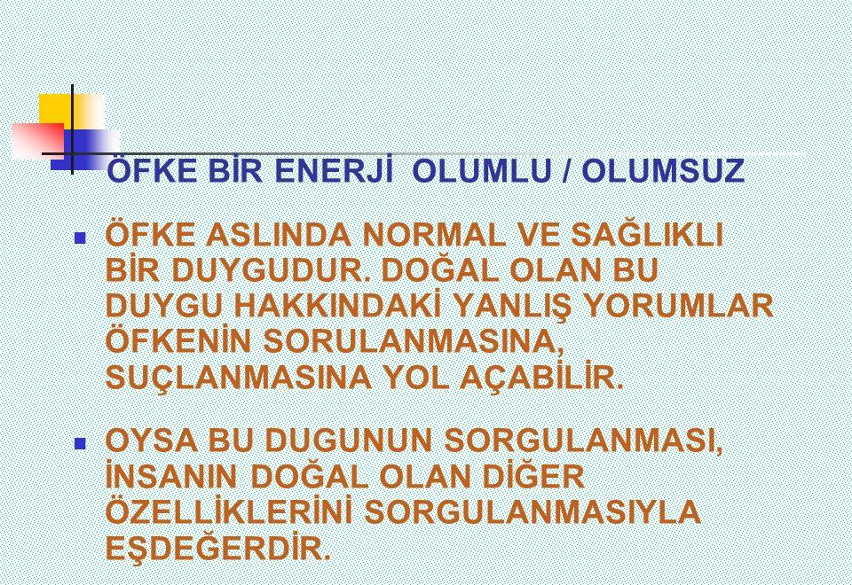 ÖFKE BİR ENERJİ OLUMLU / OLUMSUZ