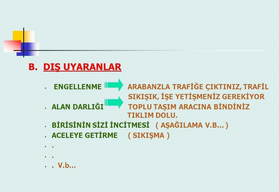 B. DIŞ UYARANLAR ENGELLENME ARABANZLA TRAFİĞE ÇIKTINIZ, TRAFİL