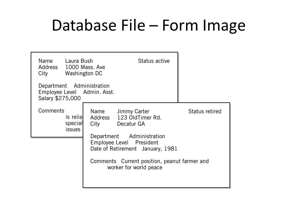 Database File – Form Image