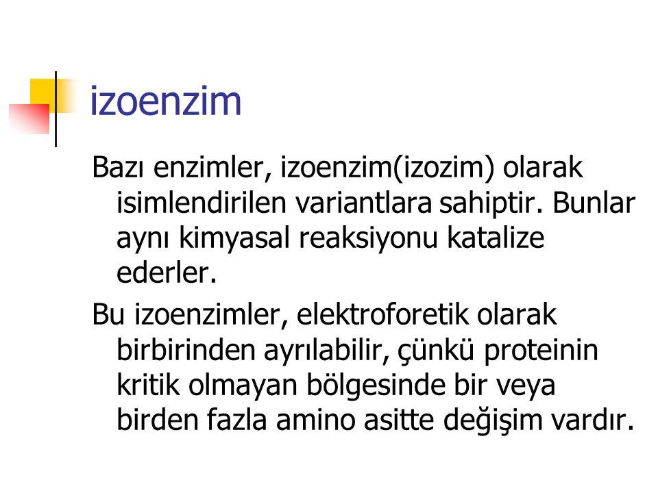 izoenzim Bazı enzimler, izoenzim(izozim) olarak isimlendirilen variantlara sahiptir. Bunlar aynı kimyasal reaksiyonu katalize ederler.