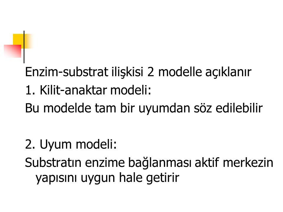 Enzim-substrat ilişkisi 2 modelle açıklanır